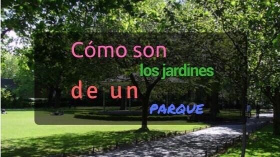 características arboles parques